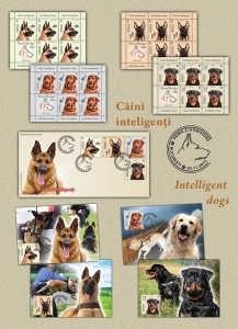 Caini inteligenti_Intelligent dogs